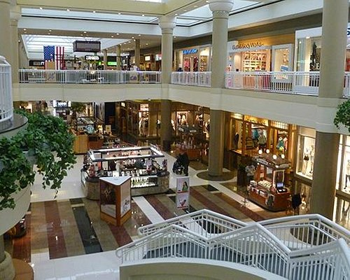 Welcome to Walden Galleria!