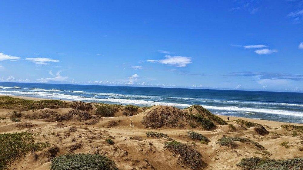 Dunes and Pacific Ocean