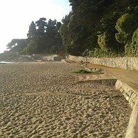 La Rambla. inicio del sendero costado playa Zapallar