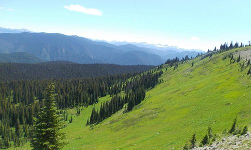 View from Heather Meadows trail, south to USA