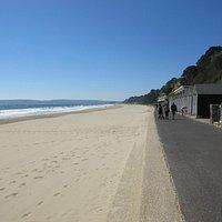 Beach at Branksome