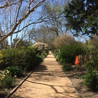 Paths around the park