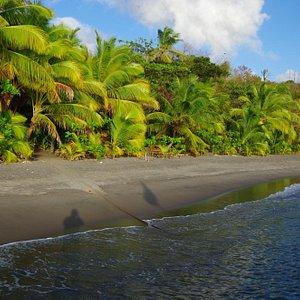 photo de la plage du club qui offre possibilité de logement vraiment sympa