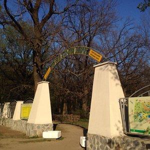 Городской парк Полтавы- Дендрарий