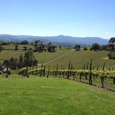 Epicurean Coldstream Hills
