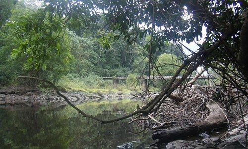 Bongola Bridge