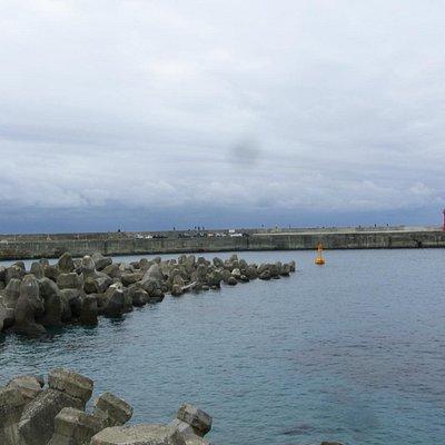 TTBバスより富岡港を見下ろす