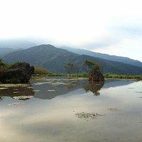 Shuizhongyang (Water in the Midst)