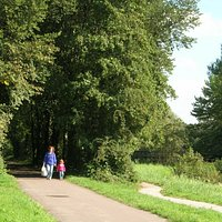 A stroll in Westerpark