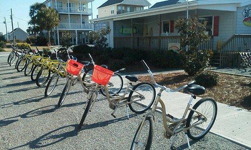 Large Rental Beach Bike Fleet