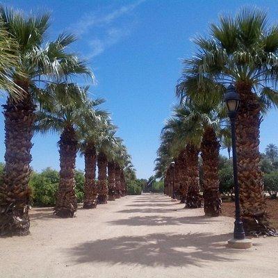 Sahuaro Ranch Park