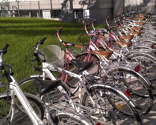 Our city-bikes :-)
