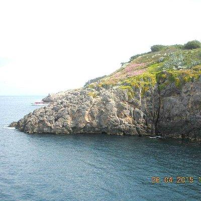 Arrivo all'isola di Giannutri