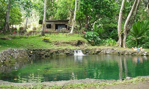 The beautiful Saay Falls
