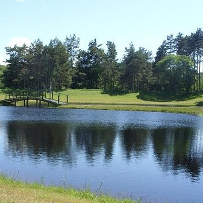 One of the 3 fishing ponds at the fishery