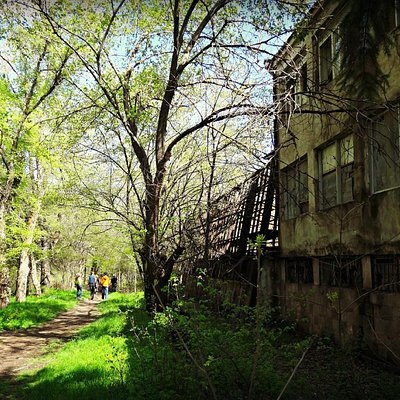 Yerevan Botanical Garden, or post-apocalyptic sci-fi movie?