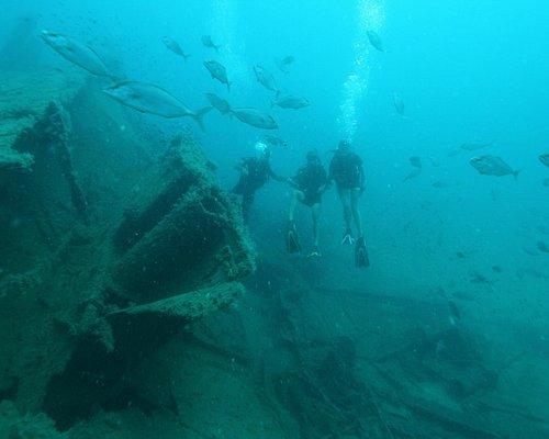 Plongée sur l'épave Alga avec le centre Archimède