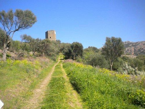weg naar het kasteel