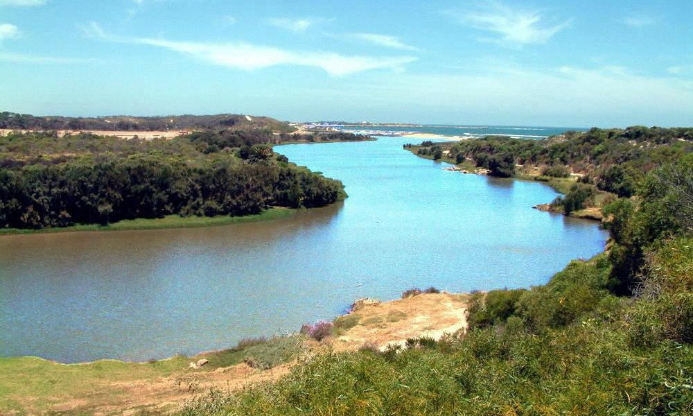 Irwin River