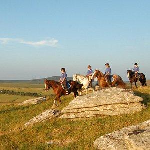 Fantastic moorland riding across Bodmin Moor