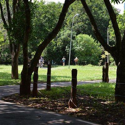 Parque Ecológico de Águas Claras