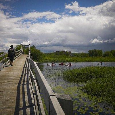 Le pont du pionnier.