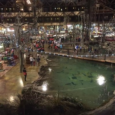 The pond in the center of the Pyramid Bass Pro shop