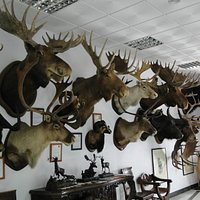 Ronda Hunting Museum - Museo de Caza