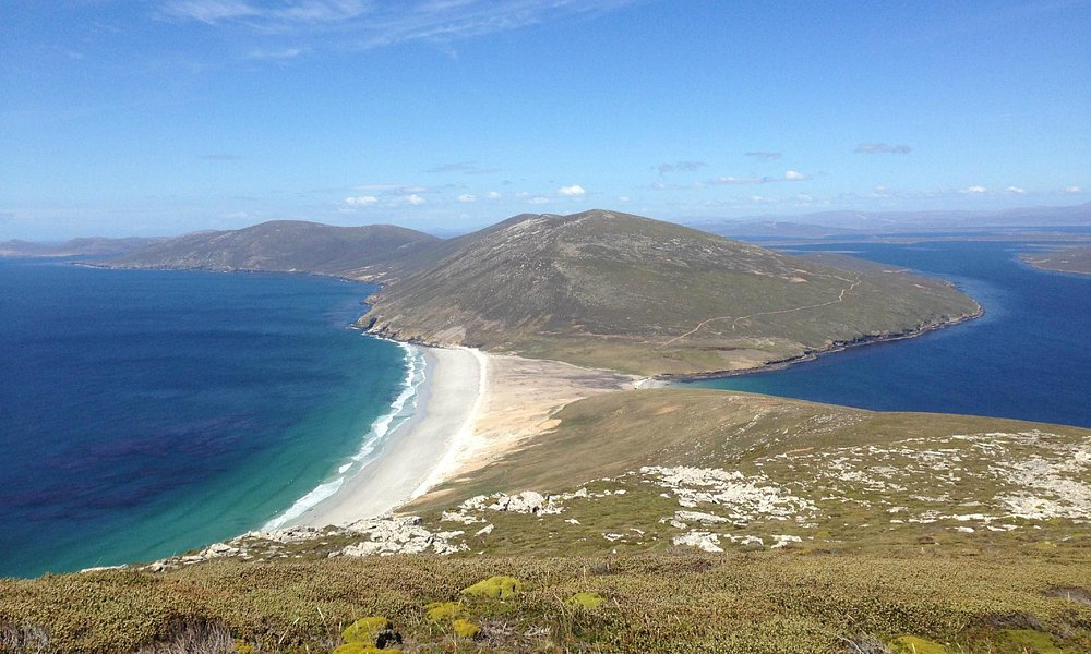 The Neck, Saunders Island