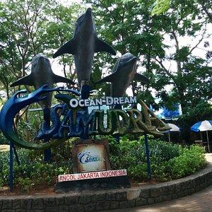 Selamat datang di Gelanggang Samudera Ancol (Ancol Oceam Dream), Jakarta