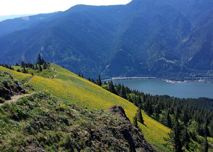 Looking down at the trail and Columbia river near top