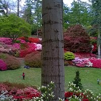 The Punch Bowl in Valley Gardens in May