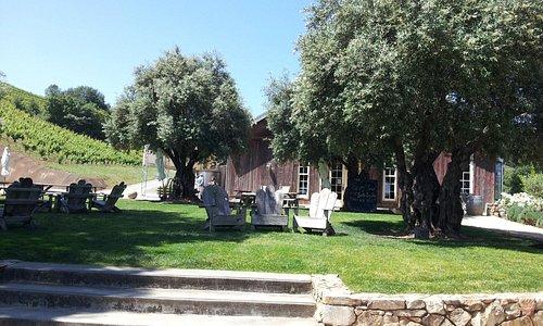 Picnic area at Bella