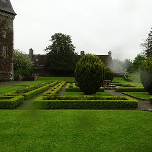 Back garden,