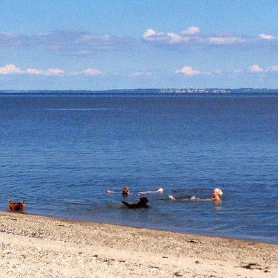 Stranden ved Ejerslev Havn