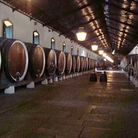 The big barrels in the aging cellar