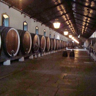 The big barrels in the aging cellar