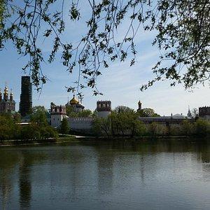 Вид на Новодевичий монастырь