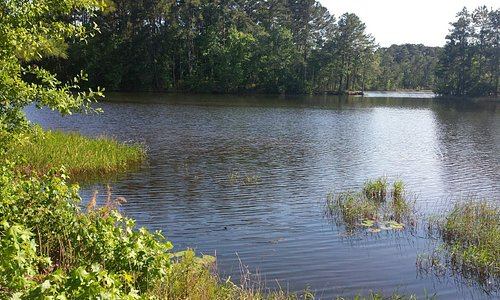 Lake Reidsville