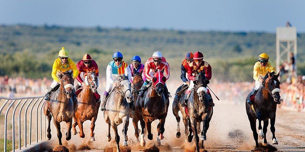 Carreras de caballos - Fiestas Mayores