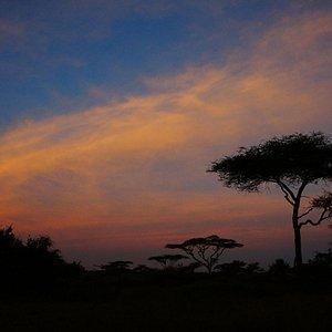 Sunrise over Serengeti camp