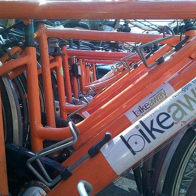 Molte bici vi aspettano