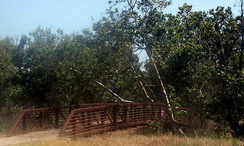 Sycamore Grove Regional Park, Livermore, CA