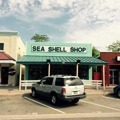 Sea shell shop rehoboth avenue