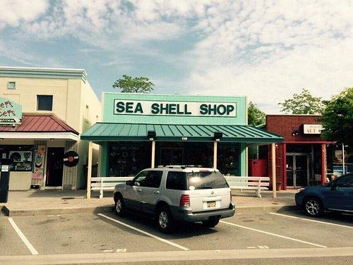 Sea shell shop rehoboth avenue