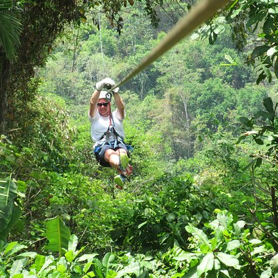 Ziplining over and thru the trees!