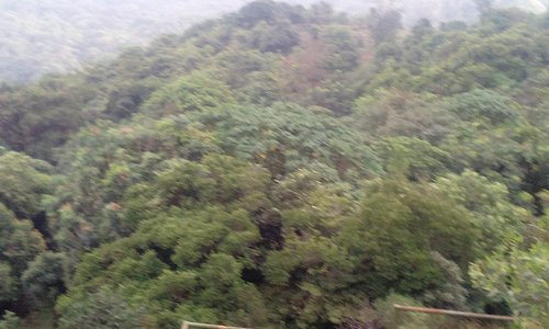 View fro Talcauvery