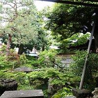 guide Ms Atsuko Yamada enjoying zen garden with me