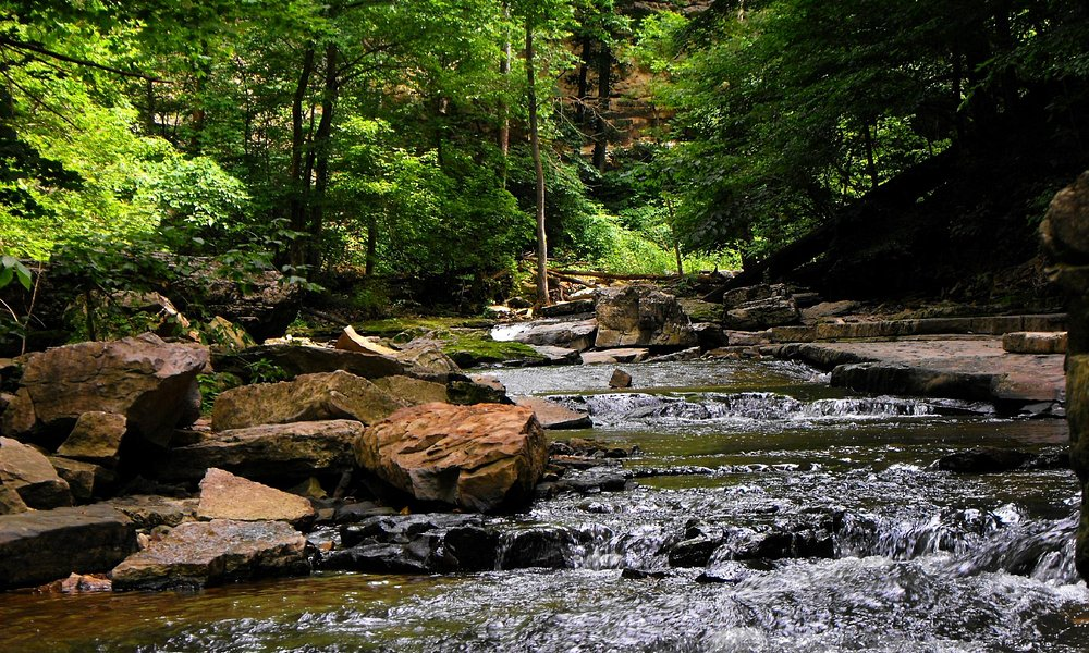 another spot downstream from the falls, come find this spot