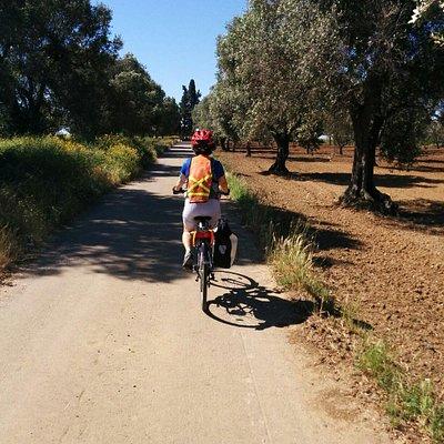 Ciclovagando Cycling Puglia
